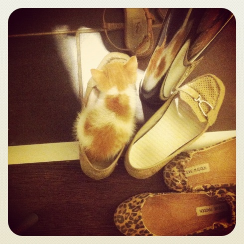 Sunny loves loafers...